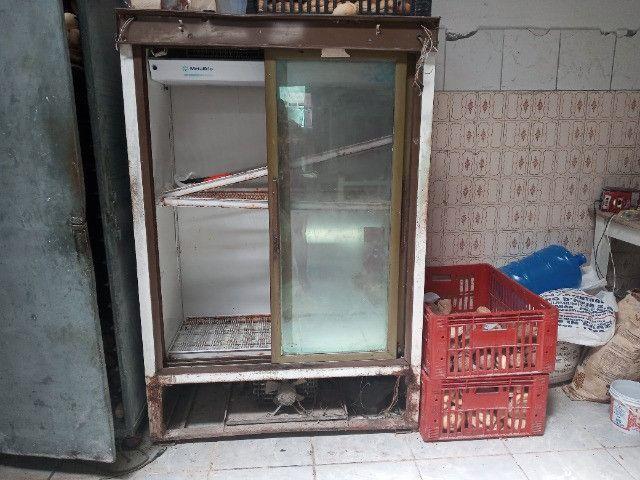 Freezer auto serviço 2 portas