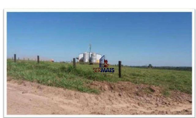 Belíssima fazenda a venda na divisa de Rondônia com o estado de mato grosso - Foto 18