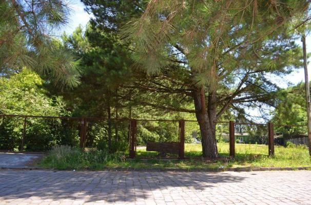 Terreno à venda, 3945 m² por R$ 3.500.000,00 - Centro - Canela/RS