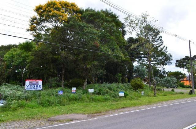 Terreno à venda, 5000 m² por r$ 3.500.000,00 - vila suica - canela/rs - Foto 12