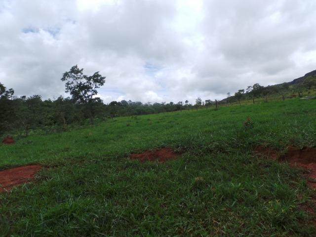 Fazenda 15 Alqueires Mun.Cocalzinho Terra de Cultura,Escriturada