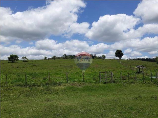 Fazenda à venda em Porto Seguro (Vera Cruz), Bahia - Foto 11