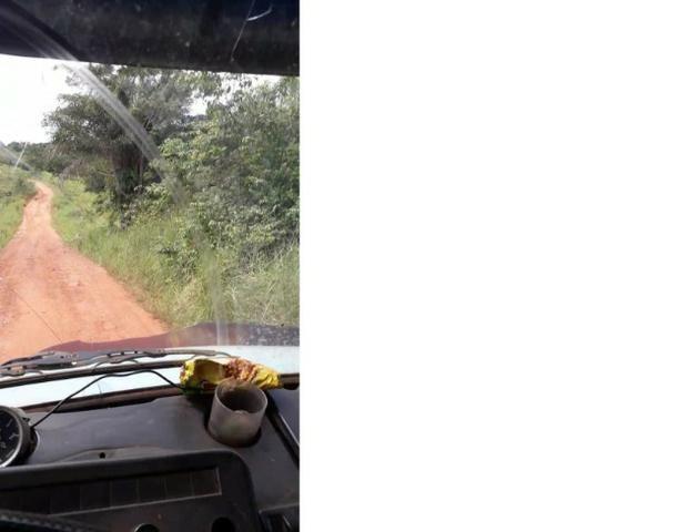 1100 Hectares, cerrado e mata, argilosa, vizinhos Soja, Região, Juína,Brasnorte-MT,Ocasião - Foto 3