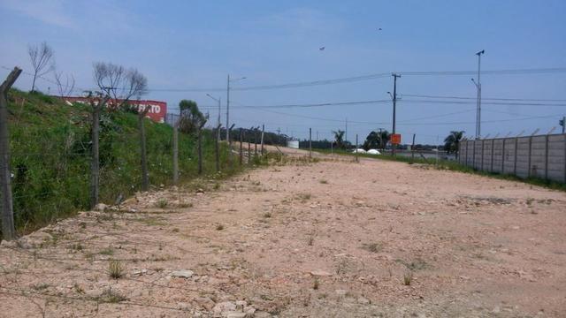 Pinheirinho terreno Linha Verde - Foto 4