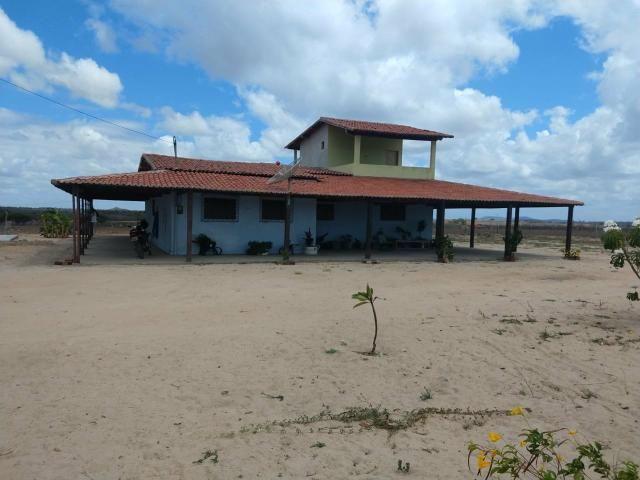 Vendo linda chácara a 8 km de tangara - Foto 4
