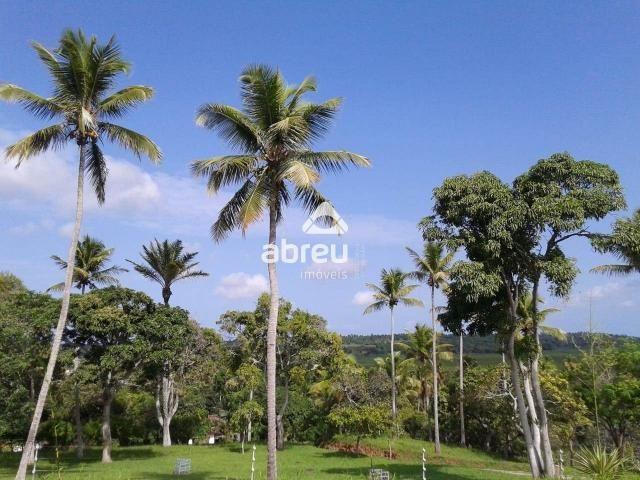 Sítio à venda com 5 dormitórios em Coqueiros, Ceará-mirim cod:767995 - Foto 6