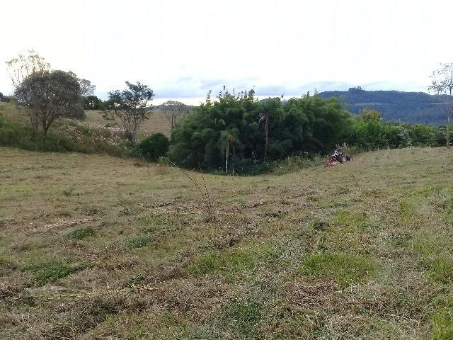 Área de terrras em Cotiporã com 15,9 hectares - Foto 3