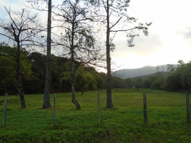 Terreno para alugar em Zona industrial norte, Joinville cod:06691.006 - Foto 2