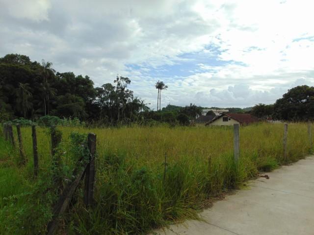 Terreno para alugar em Atiradores, Joinville cod:30040.012 - Foto 6