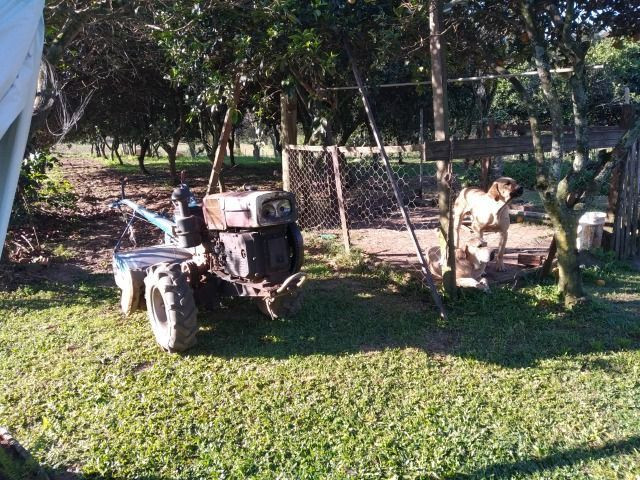Velleda oferece sítio 3 hectares, 3 dormitórios, horta irrigada, 2 piscinas, açude - Foto 11