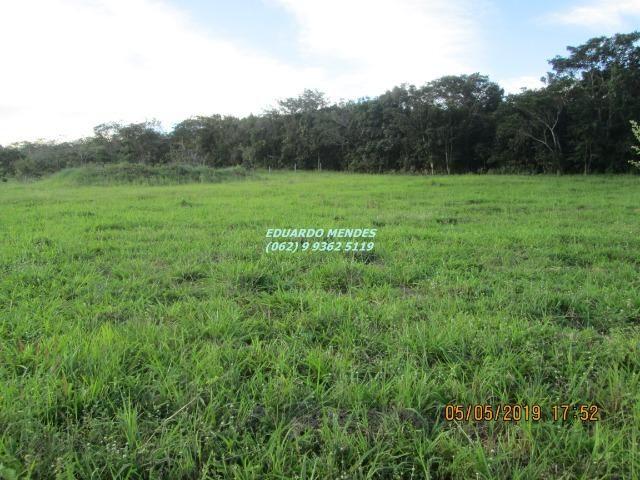 Oportunidade de adquirir sua Chácara de lazer c/ água a 1 km de Gameleira de GO - Foto 17