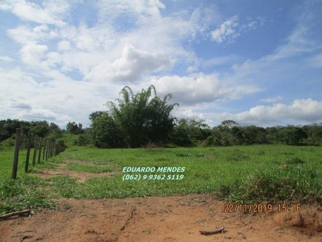 Oportunidade de adquirir sua Chácara de lazer c/ água a 1 km de Gameleira de GO - Foto 8