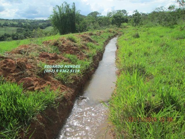 Oportunidade de adquirir sua Chácara de lazer c/ água a 1 km de Gameleira de GO - Foto 14