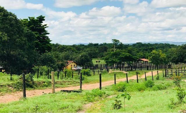 VENDO SÍTIO 22,6 Alq. próximo de Itapirapuã e Águas de São João- Goiás R$2Milhões - Foto 12