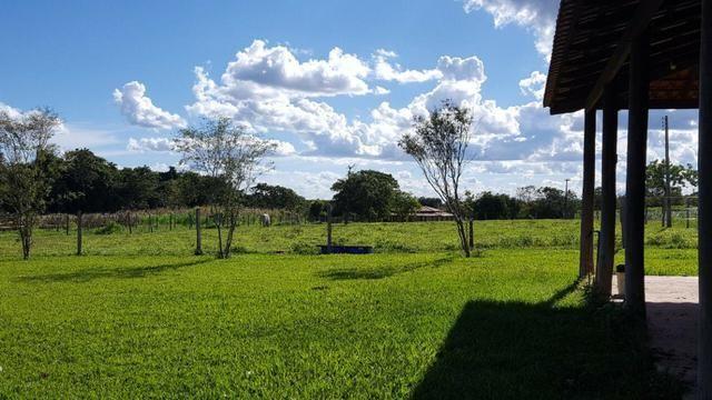 JP 012 - Ótima fazenda colado no Gama, a 27km - Foto 11
