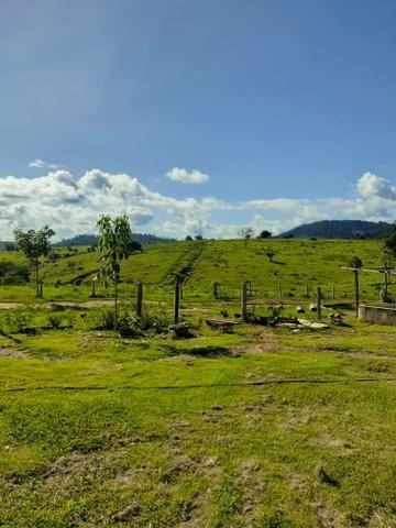 Venda fazenda 20 alqueires localizada 5 km da vila Paulo fonteles - Foto 3