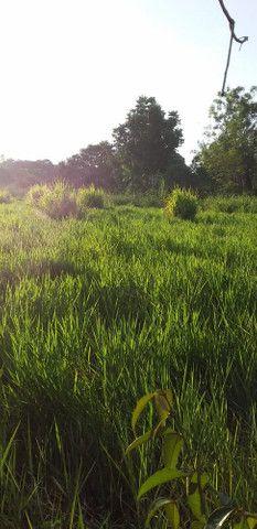 Terreno na área rural - Foto 6