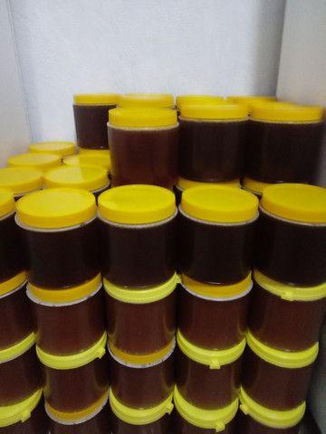Mel de abelha 100% silvestre - Foto 3