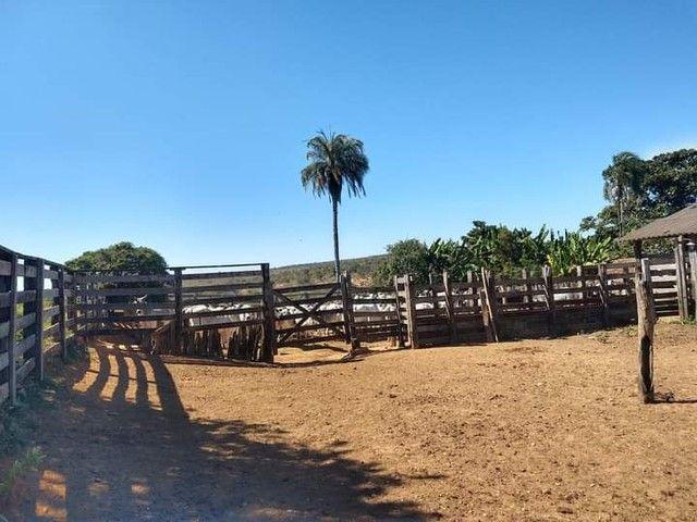 Fazenda, Sítio, Chácara - Crédito Rural - Foto 2