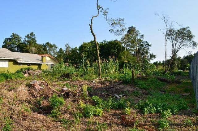Terreno residencial à venda, vale dos pinheiros, gramado. - Foto 6