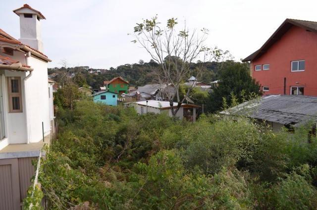 Terreno residencial à venda, são josé, canela. - Foto 9