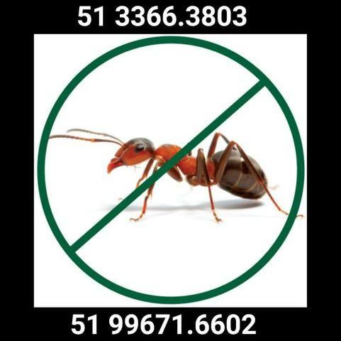 Desinsetização de Formigas Cortadeiras e Doceiras