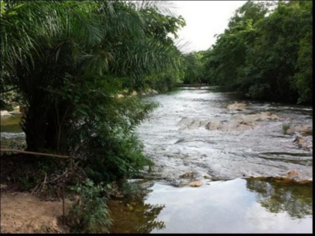 Chácara Coxipó do ouro á venda 27 hectares - Foto 4