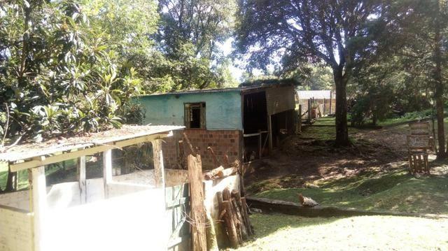 Chácara Campo Magro Área de 21.477m² - Com Benfeitorias - Foto 7