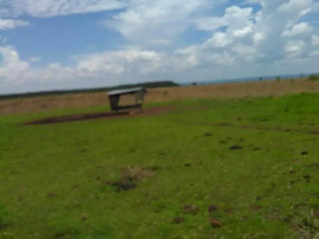 Fazenda em paranatinga - Foto 11