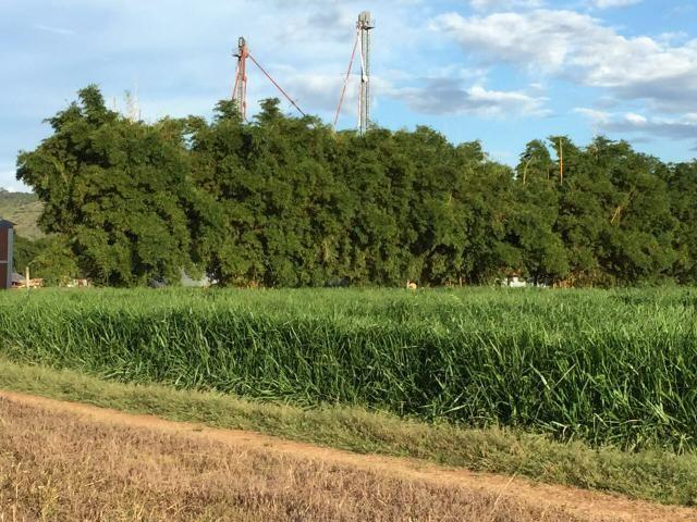 Fazenda em paranatinga - Foto 6