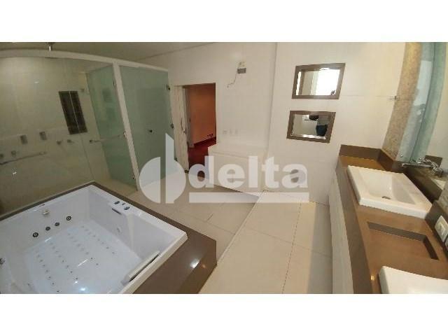 Casa para alugar com 0 dormitórios em Patrimônio, Uberlândia cod:559204 - Foto 20