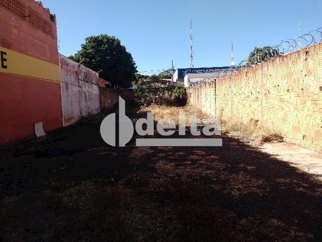 Terreno para alugar com 0 dormitórios em Umuarama, Uberlândia cod:567245 - Foto 3