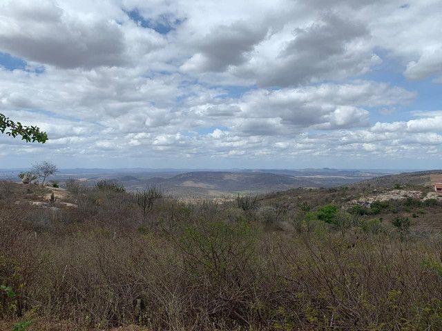 Terreno Serra de São Bento - Foto 5
