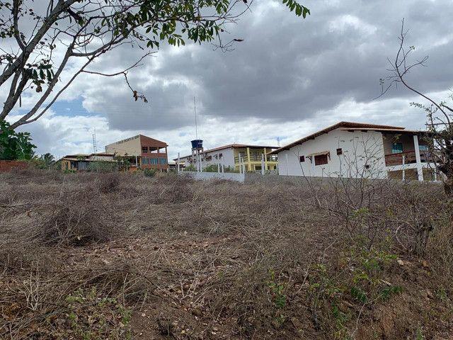 Terreno Serra de São Bento - Foto 9