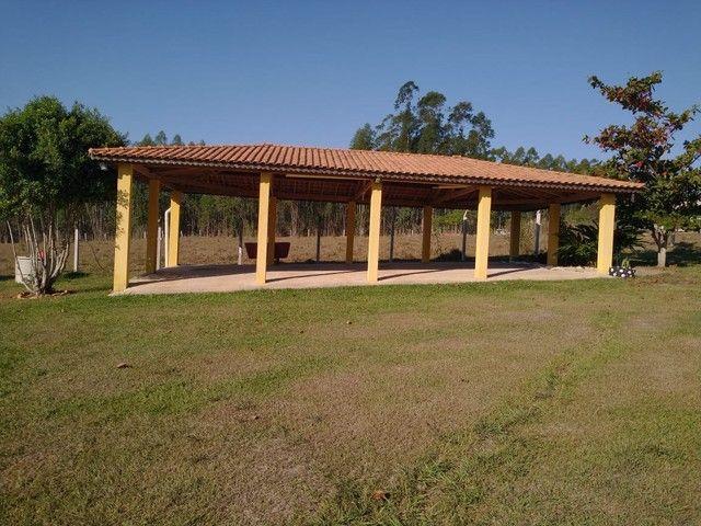 Chácara, Sítio, a Venda com 22.000 m² com 4 Quartos, Sendo 1 Suíte, Toda Formada a 3 km da - Foto 16