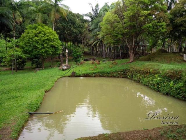 Chácara com 3 dormitórios à venda, 24189 m² por r$ 320.000,00 - rio sagrado - morretes/pr