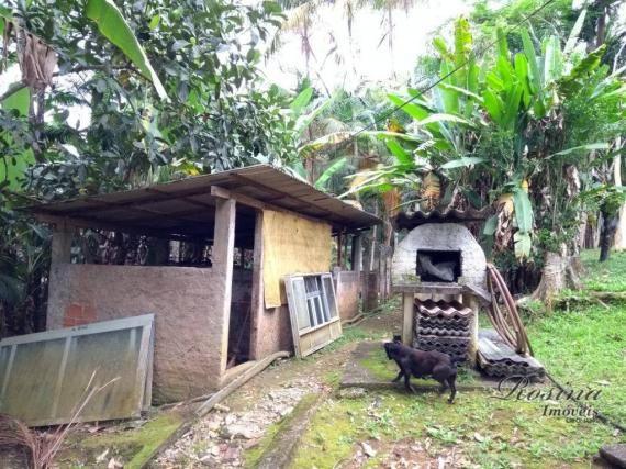 Chácara com 3 dormitórios à venda, 24189 m² por r$ 320.000,00 - rio sagrado - morretes/pr - Foto 17