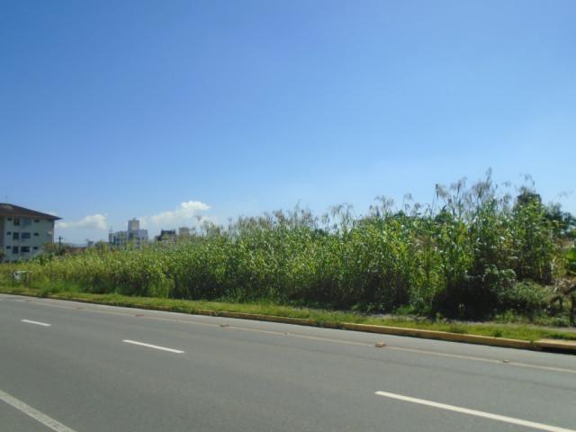 Terreno para alugar em America, Joinville cod:08039.001 - Foto 3