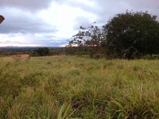 Excelente sítio, com casa sede e casa de caseiro na região de Santo Estevão Bahia - Foto 11