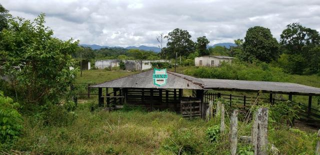Camacan. Fazenda de Cacau com 430 Hectares. Rica em água - Foto 19