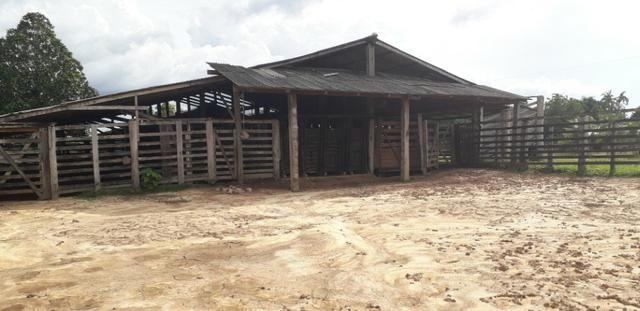 Fazenda bem estruturada - Foto 6