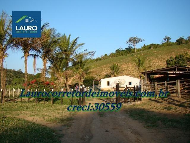 Fazenda com 29 Hectares à 28 km de Teófilo Otoni-MG. - Foto 2