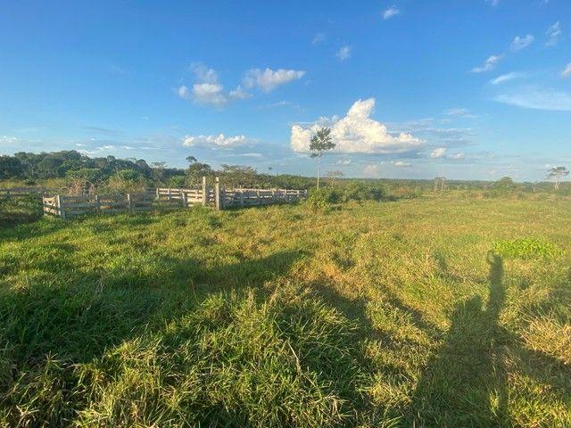 Vendo terra na AC 10 Km 27 estrada de Porto Acre  - Foto 6