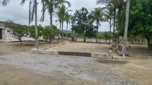 Granja / Sítio 6 hectares com poço.