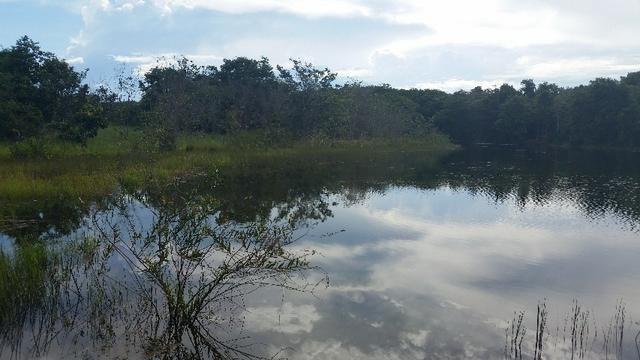 Fazenda - Municipio Dom Aquino - MT - 381 hectares