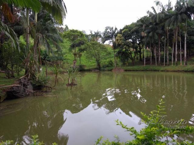 Chácara com 3 dormitórios à venda, 24189 m² por r$ 320.000,00 - rio sagrado - morretes/pr - Foto 15
