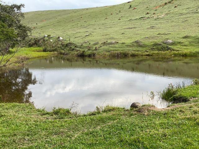 Lotes de terrenos com 5 mil metros - ideal para sua chacara,preço indiscutivel!!! - Foto 5