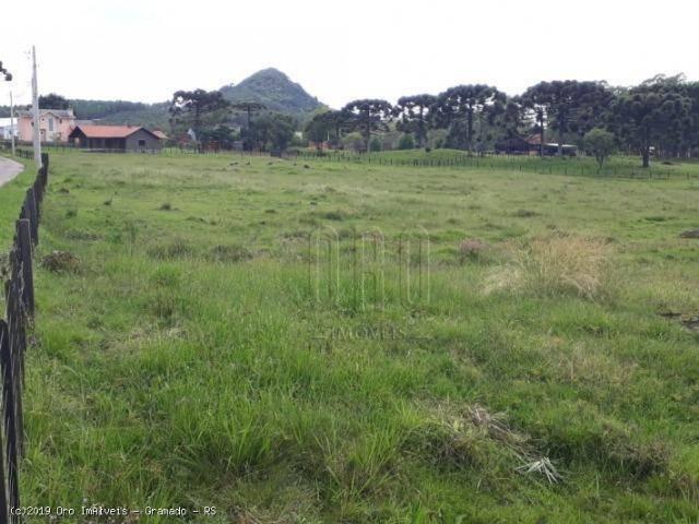Sítio à venda, 4 m² por r$ 2.156.000 - serra grande - gramado/rs - Foto 16