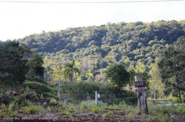 Sítio à venda, 45000 m² por r$ 897.000,00 - linha bonita - gramado/rs - Foto 15