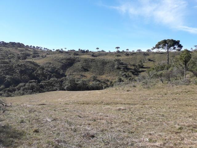 Terreno em Urupema - Foto 16